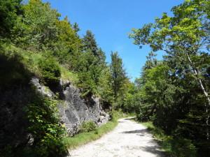 Route des crêtes 3