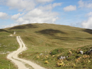 Route des crêtes 4