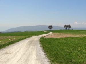 Mont Sion